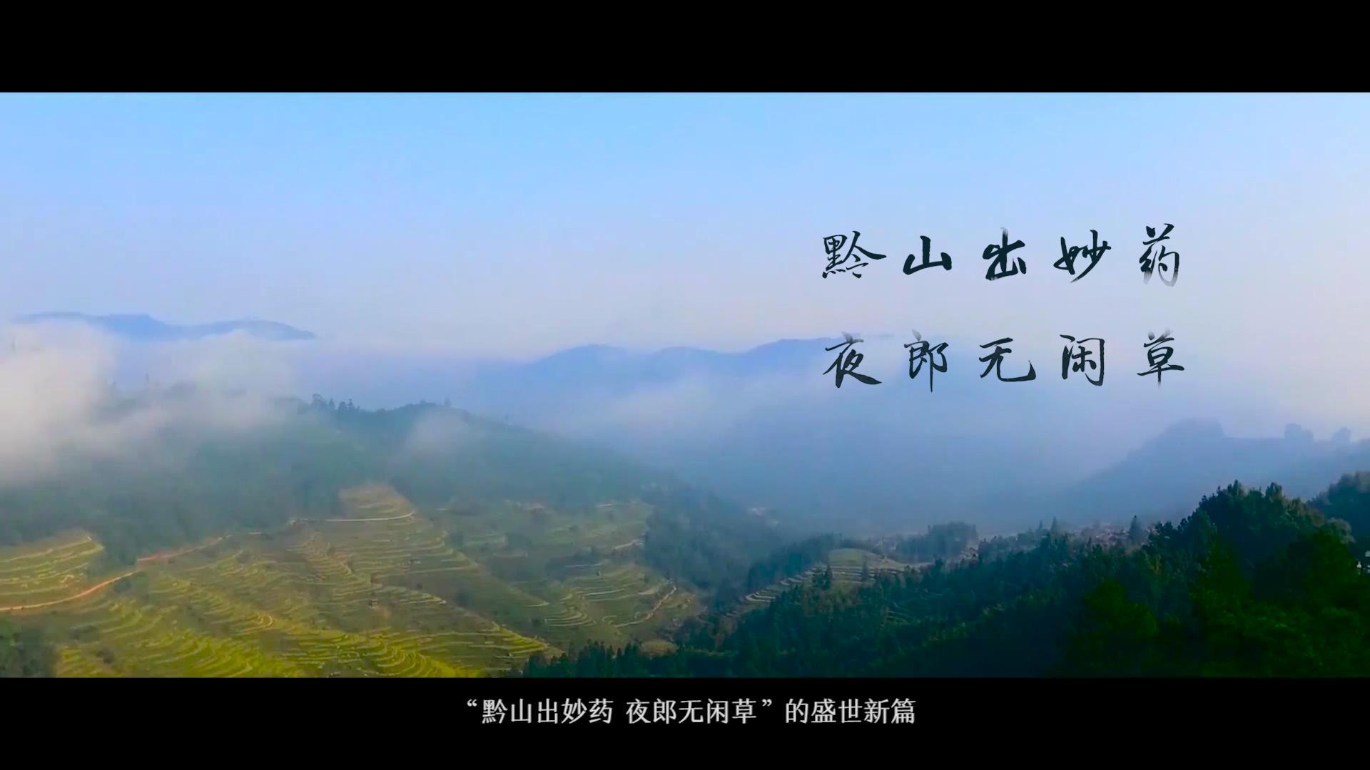 朗致集团贵州太和制药公司宣传片